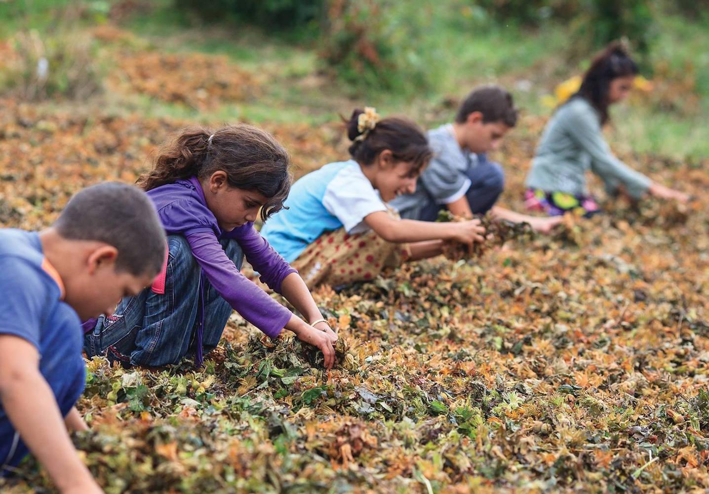 Adana'da Çocuk İşçiler Okula Gidemiyor