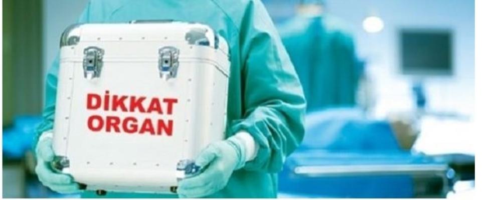 Türkiye'de 24 Bin Kişi Organ Nakli İçin Bekliyor