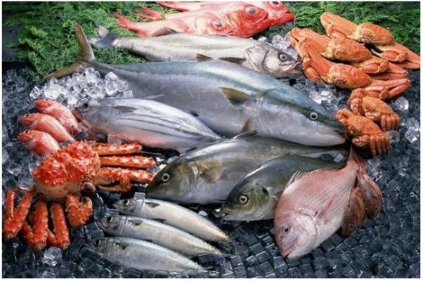 Sağlıklı Beslenmede Balık Ve Balığın Yarını