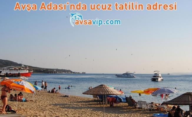 Avşa Adası'nda Ucuz Tatilin Adresi Avsavip.com