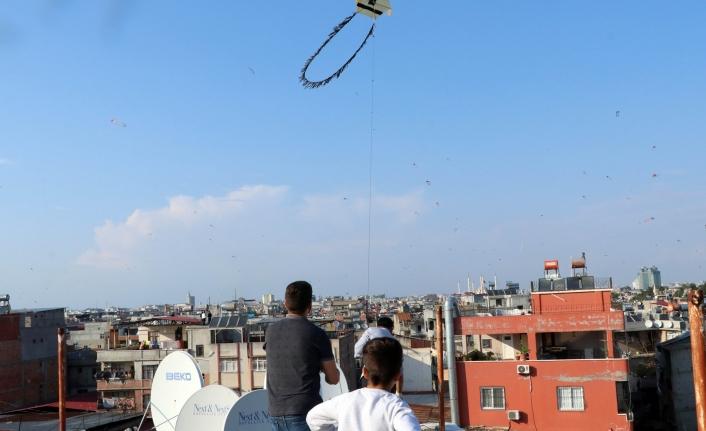 Adana'da Hayat Dama Sığmadı