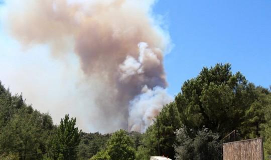 Adana'da 6 Noktada Orman Yangını Sürüyor