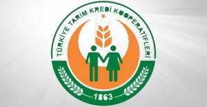 Tarım Kredi Kooperatifleri KPSS 60 Puan İle 84 Memur Alımı Gerçekleştirecek