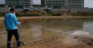 Adana Belediyesinde Vektör Çalışmalar ı Sürüyor