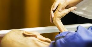 Kronik Hastalıklar ve Önlenebilirlik