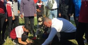 Karataş Belediyesi Zeytin ve Turunçları toprakla buluşturdu