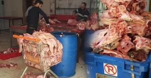 Adana'da 1,5 Ton Kaçak Kelle Paça Ele Geçirildi