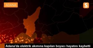 Adana'da Elektrik Akımına Kapılan Boyacı, Feci Şekilde Can Verdi