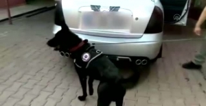 Adanada Otomobilin Yakıt Deposunda...